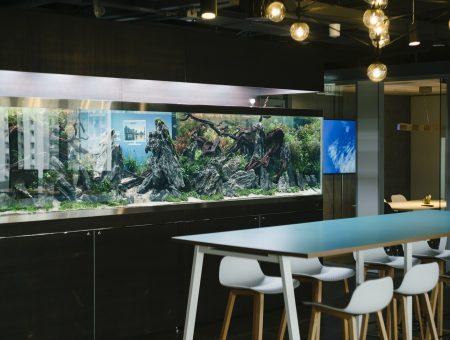 Next Story Group Unveils Aquascapes at Kafnu Hong Kong